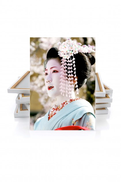 Canvas Geisha - Japan By Emmanuel Catteau