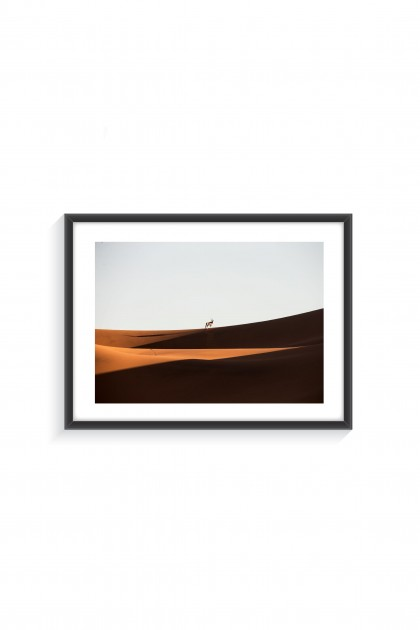 Poster with frame Oryx in the Desert - By Emmanuel Catteau