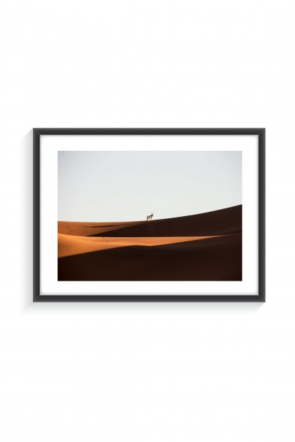 Poster with frame Oryx - Namibia By Emmanuel Catteau
