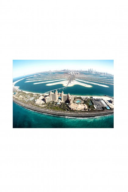 Reusable sticker Palm Jumeirah By Emmanuel Catteau
