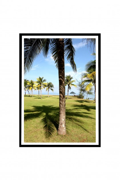Poster with frame Palm Trees - Thailand By Emmanuel Catteau