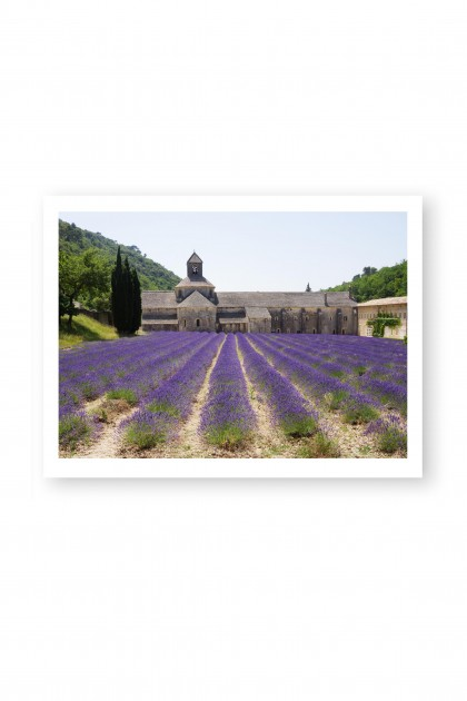 Poster Abbaye of Senanque - France By Emmanuel Catteau