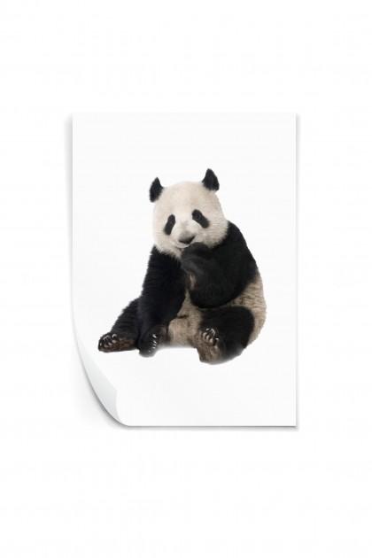 Reusable sticker The Panda