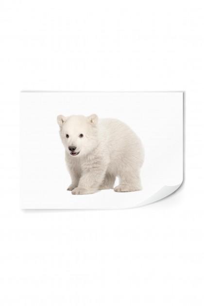 Reusable sticker The Polar Bear