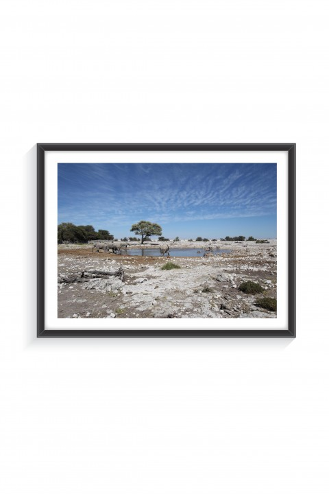 Poster with frame National Park of Etosha - Namibia  By Emmanuel Catteau