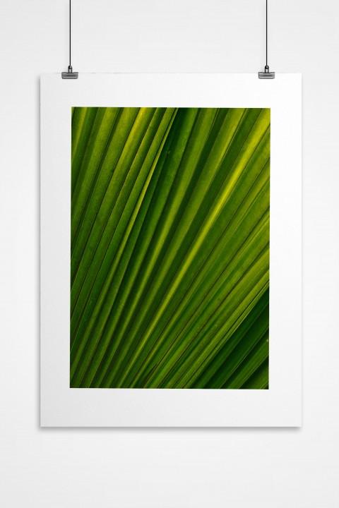 Poster Green By Emmanuel Catteau