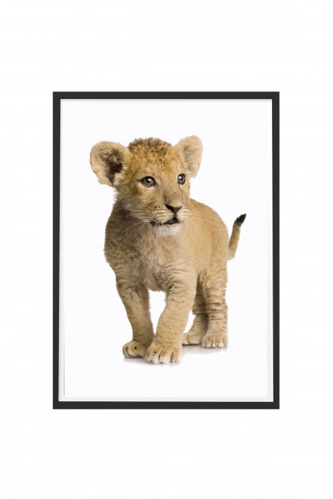 Poster with frame The Lion